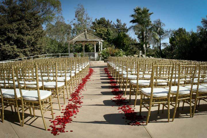Party rentals in orange county california event rental store photo gallery junglespirit Gallery